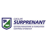 Groupe Surprenant gestion de parasite